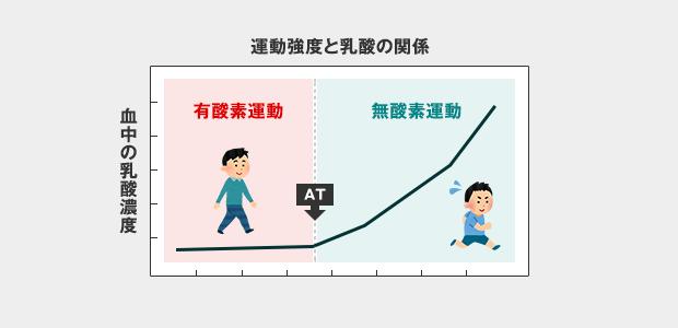 運動強度(AT)のグラフ
