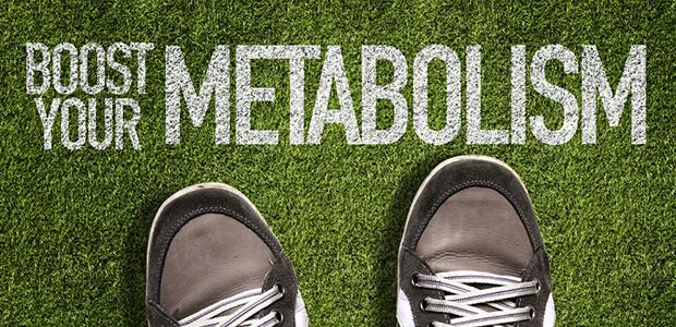 基礎代謝とは