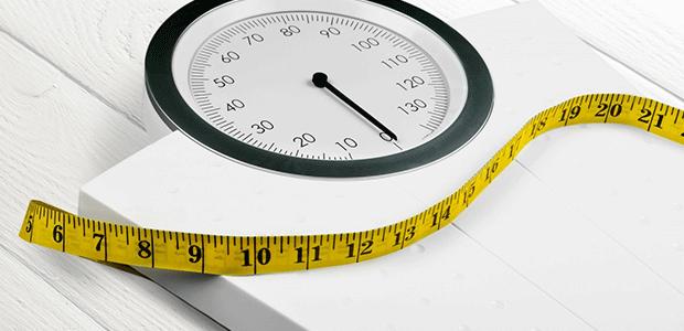 基礎代謝は体重に比例する