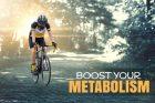 基礎代謝が高いと太れない?基礎代謝とは?