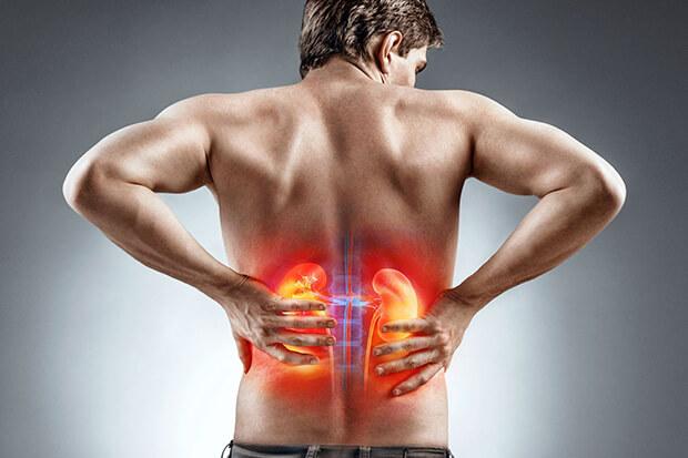 プロテインの過剰摂取は危険?!~腎臓・肝臓への影響~