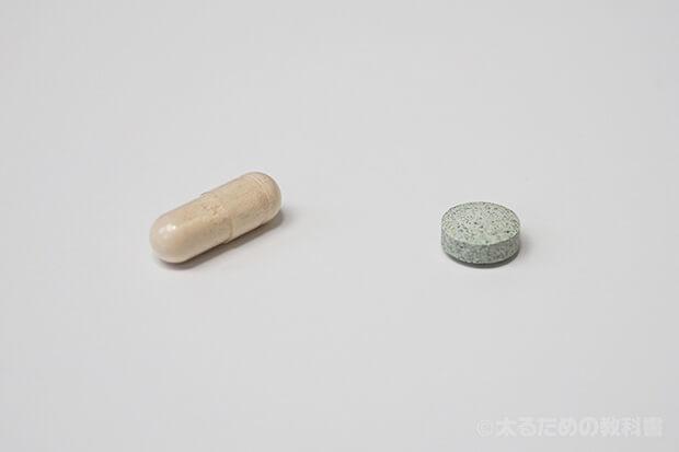プルエル(左)とファティーボ(右)